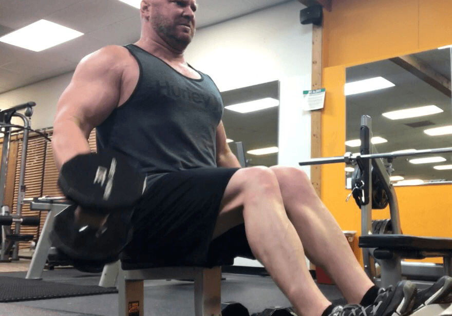 seated dumbbell curls for arm day biceps