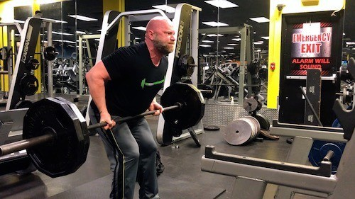 barbell rows reverse grip