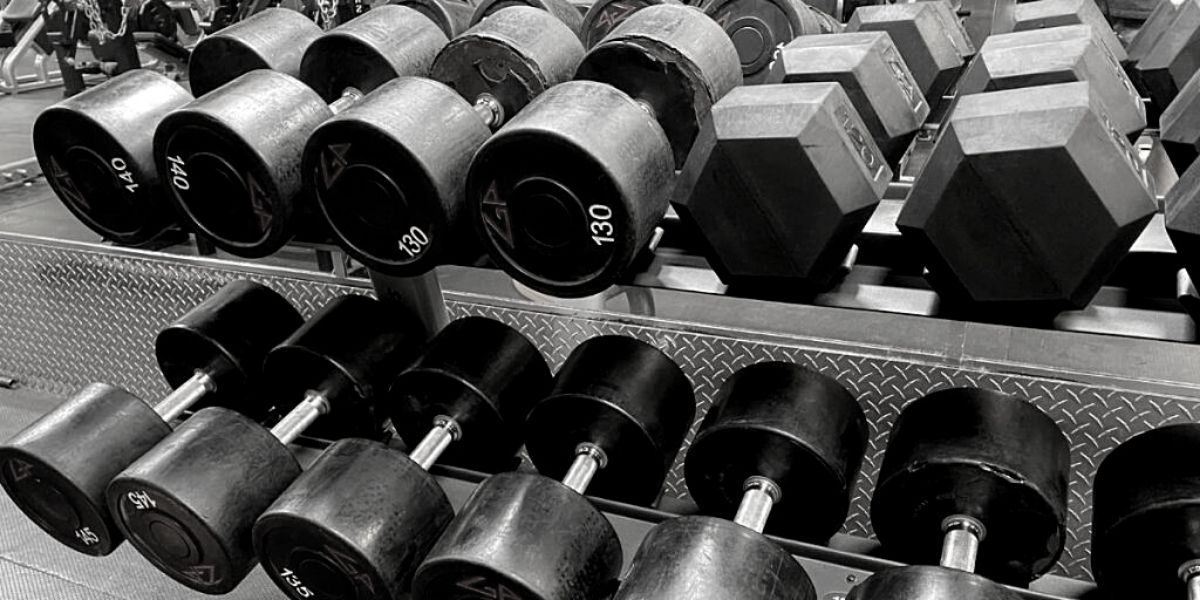 10 muscle building workout strategies plans and methods